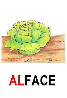 Cartaz sílaba complexa alface