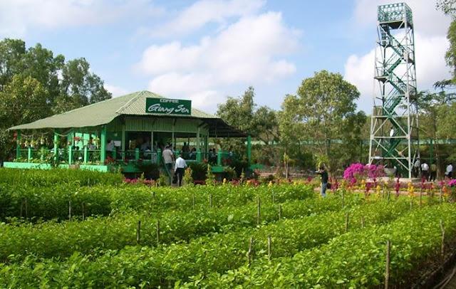 Thưởng thức coffee ở vườn chim Bạc Liêu