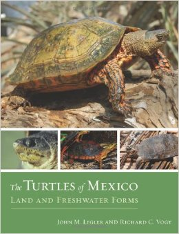 The turtles of Mexico