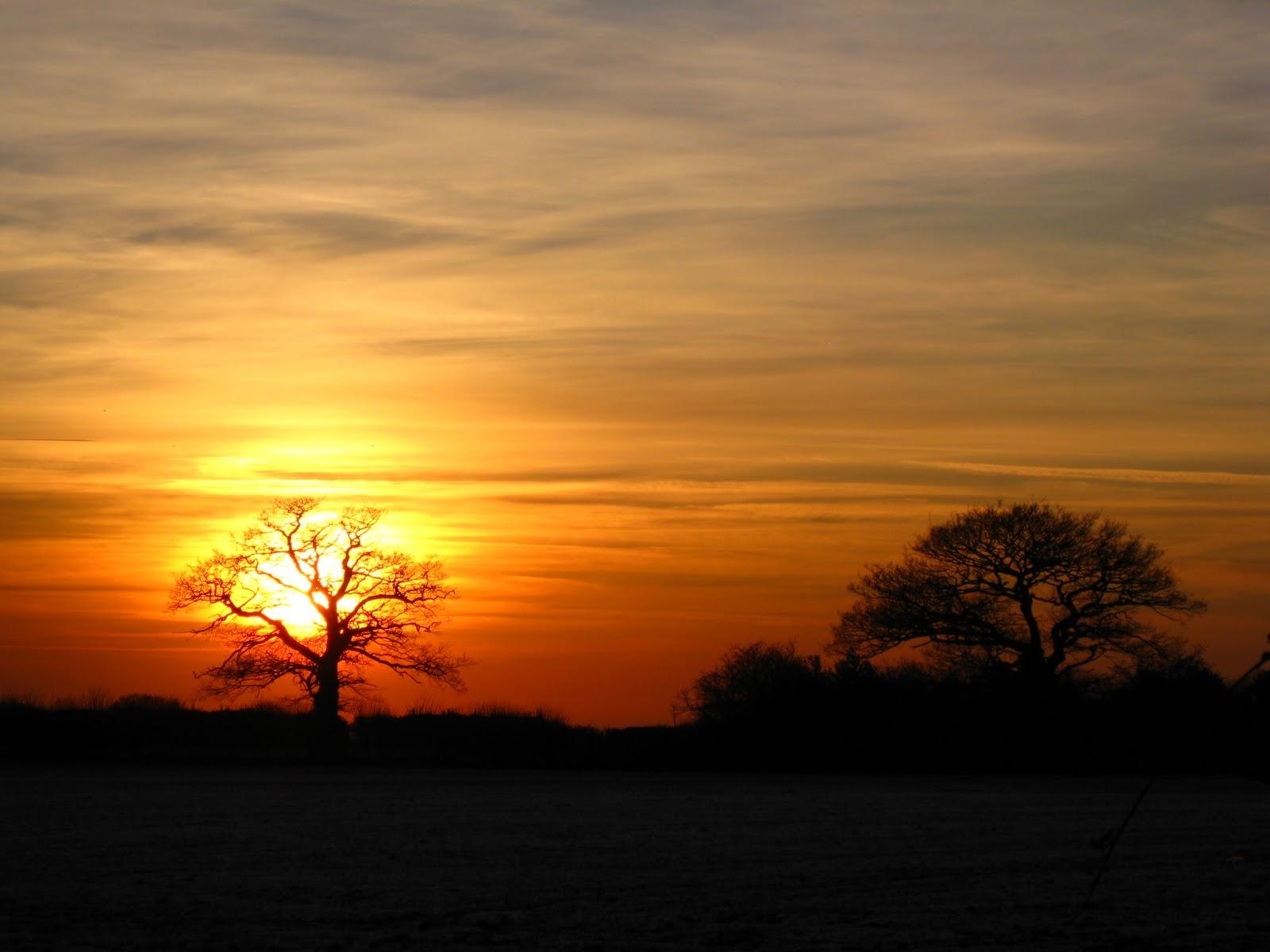 International Wallpaper: Beautiful Winter Sunset Pics