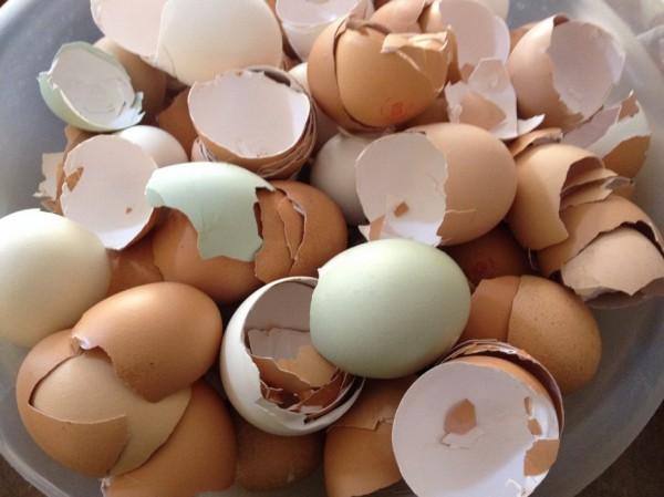 yumurta-kabugu-ile-camasirlari-bembeyaz