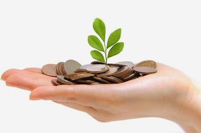 Capital semilla para creación de empresas
