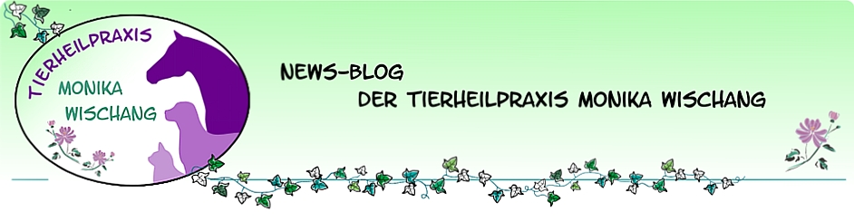 News-Blog zur Tierheilpraxis Monika Wischang
