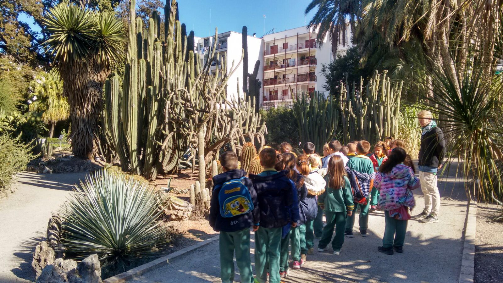 Jard n bot nico colegio concha espina valencia for Talleres jardin botanico