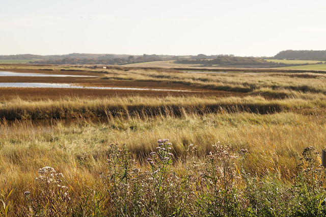 Norfolk Wildlife Trust Cley Marshes Nature Reserve