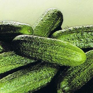 Голландські огірки висаджуються за певною схемою, найпопулярнішою серед яких є квадратна посадка