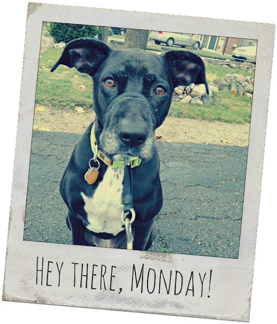 {ErinOutandAbout} Hey there, Monday!