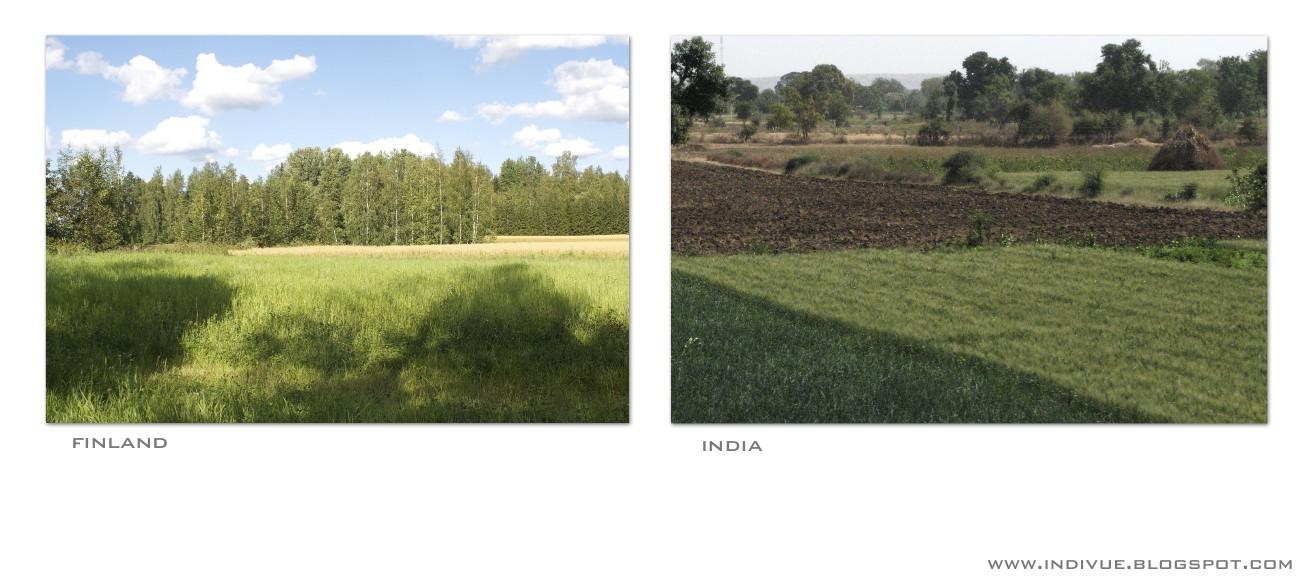 Pelto Intiassa ja pelto Suomessa