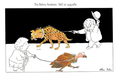"""The Nature Awakens"", NAC, animaux de compagnie, Malric"