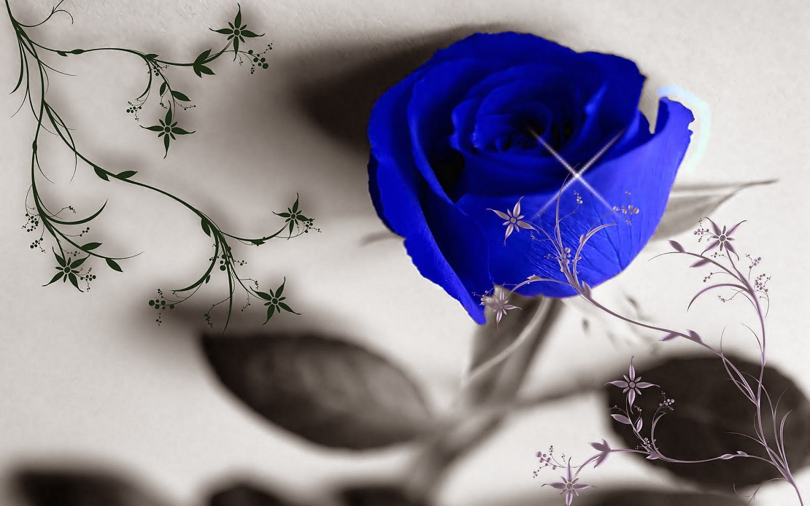 blue roses pichttp