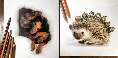 00-Animal-Drawings-Quanyu-www-designstack-co