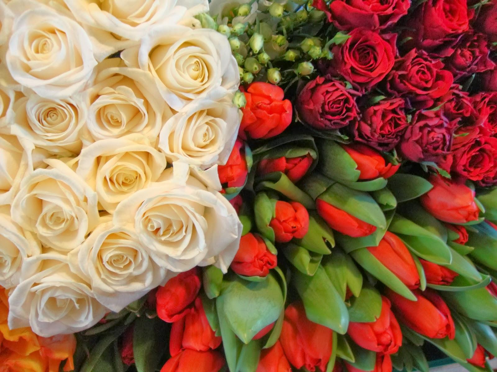 un piccolo giardino in città: fiori per san valentino: 4 consigli ... - Piccolo Giardino Consigli