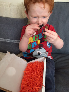 Little boy playing with the mini figures