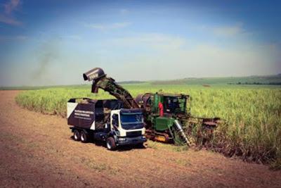 Volvo inicia operação de caminhões 'autônomos' em lavouras de cana