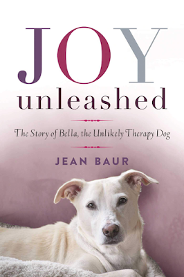 Joy Unleashed Book Review