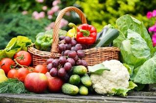 Calorie Nutrition Optimum Restriction for Human Health - startgohealthy.com