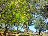 Parque Senhor do Vale
