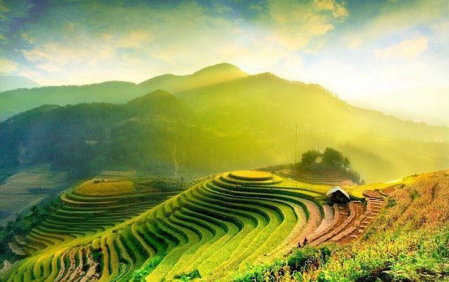 vietnam gezi ucuz