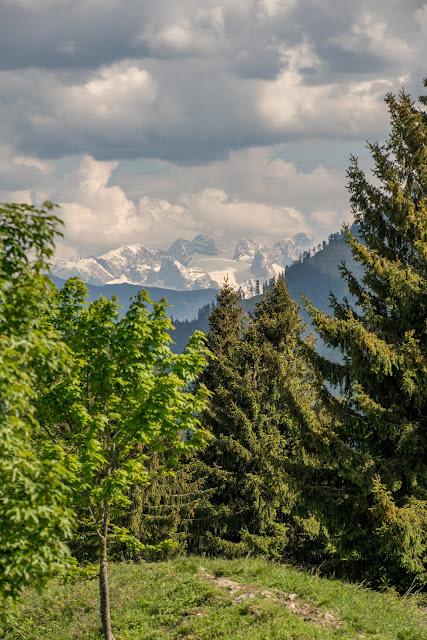 Von Hof bei Salzburg auf den Filbling  Wandern in der FuschlseeRegion 15
