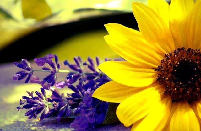 Pengisian Rohani - Cara Mencapai Istiqamah