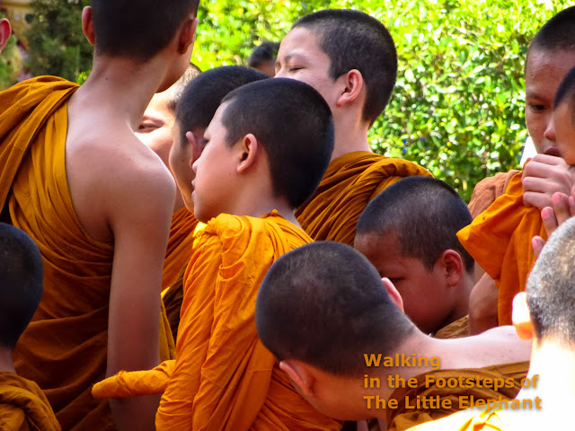 A group of young monks in Lamphun