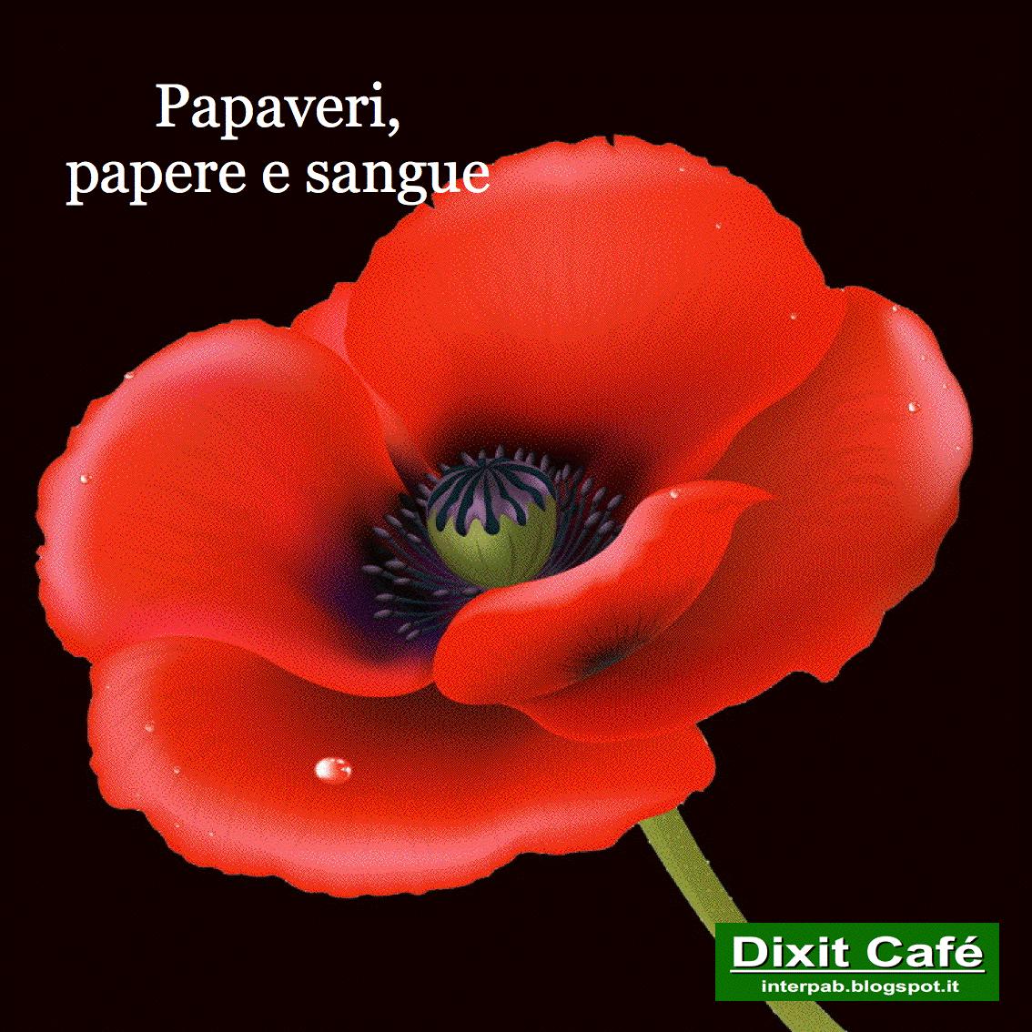 Il mio amico Silvio Saffirio ha postato su Facebook un commosso tributo al  papavero 12bbaebf364