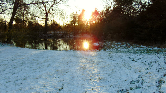Sun on the pond winter was here