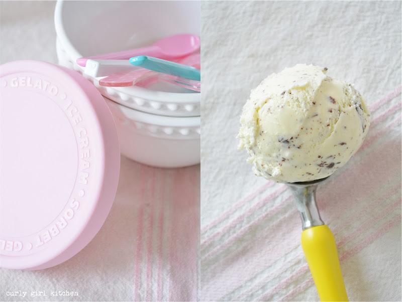 Vanilla Bean Chocolate Chip Ice Cream