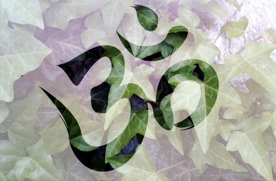 mantra meditation question and answers, what is bija mantra