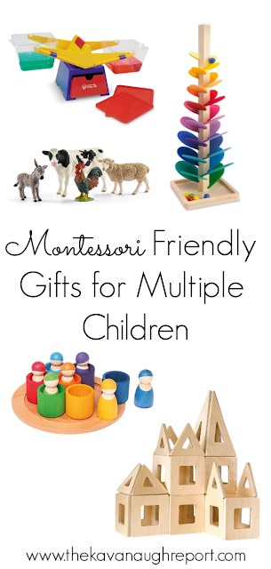 Montessori friendly toy ideas for multiple children - things that can be used for multiple ages or more than one child