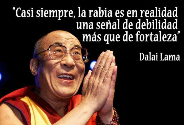Algunas Personas Simplemente Nacieron Para Recorrer El Mundo: Es El Título Que Obtiene El Líder Espiritual Del Budismo