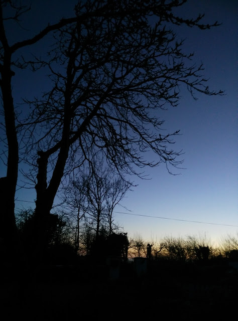 looking at the first signs of dawn in the night sky