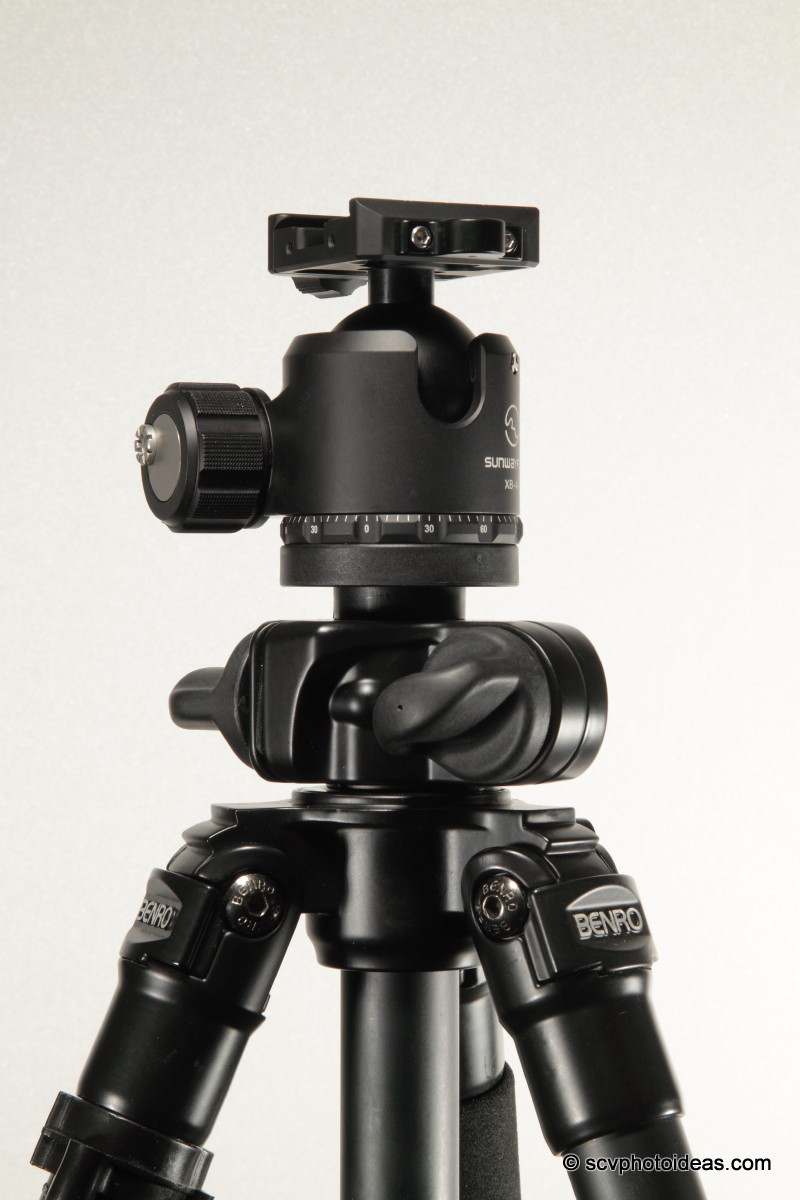 Sunwayfoto XB-44 ball head on Benro A-296EX versatile tripod top