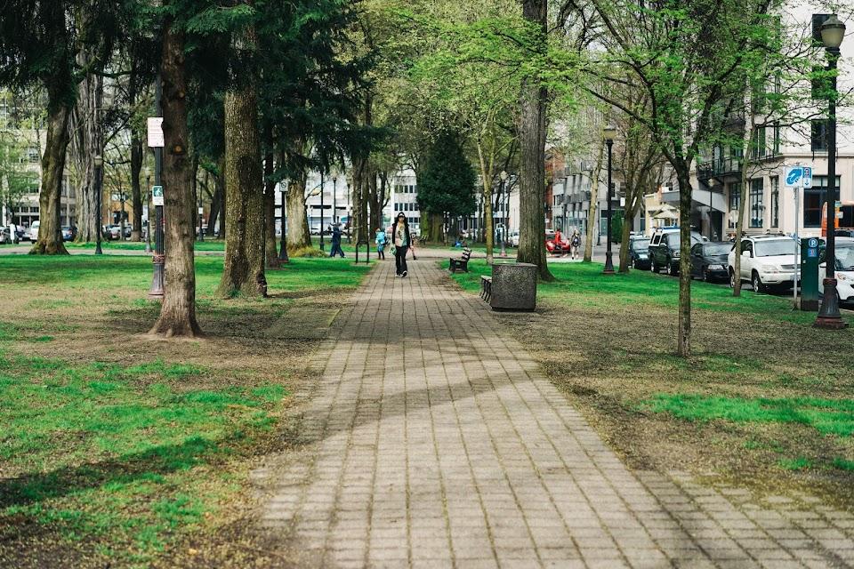 ノース・パーク ブロックス( North Park Blocks)