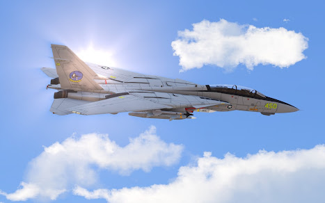 Arma3用F-14 Tomcat MODのVF-124 Gunfighters