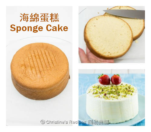 如何做海綿蛋糕 How To Make Sponge Cake