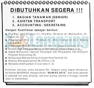 Lowongan Kerja Lampung Terbaru di Harian Waspada Bandar Lampung Mei 2016