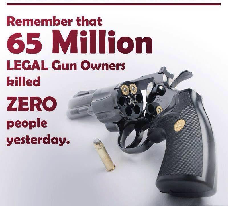 protect lawful gun owners - 800×722