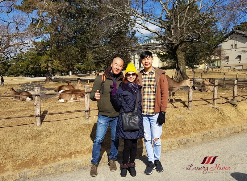 singapore parenting blog osaka nara park tour