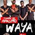 Turma do Aprumo Ft. Godzila do Game & Dj Aka M - Waya (2017) [Download]