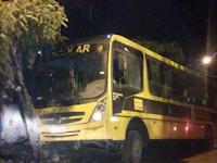 Ônibus escolar tenta desviar de buraco na pista e bate em árvore na Paraíba