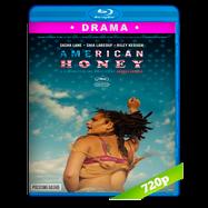 Dulzura americana (2016) BRRip 720p Audio Ingles 5.1 Subtitulada