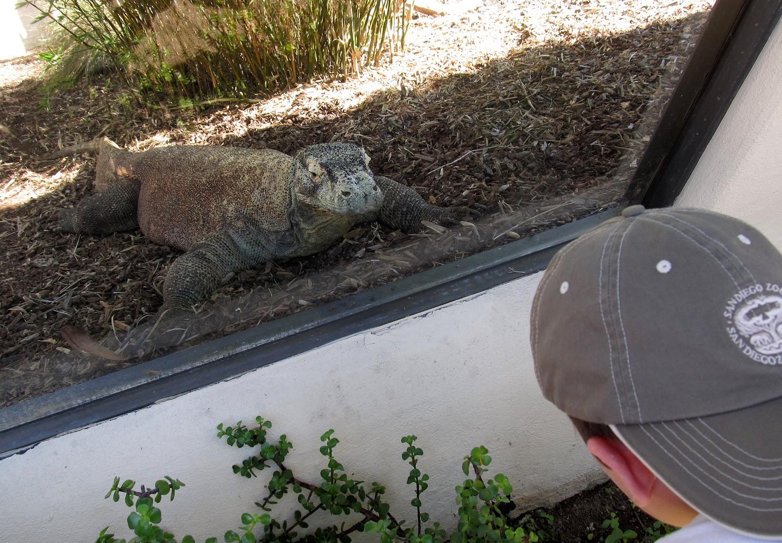 Komodo Dragon Endangered List
