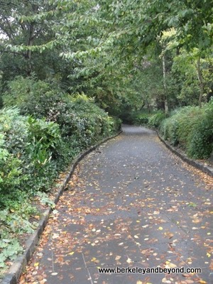 path in Merrion Square Park in Dublin, Ireland