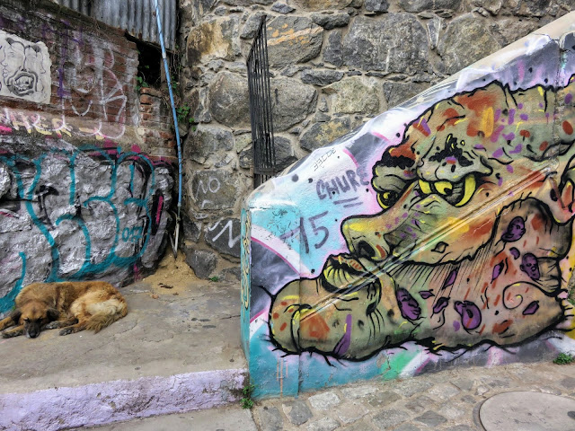 Stray dog sleeping by a staircase covered in street art in Valparaíso Chile