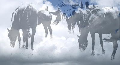 Фото коллекция - Облачные Лошадки - Проект Аукцион Современного искусства современная фотография, оригиналы фото. Auctions Photos - Heavenly Horses Series Photography.