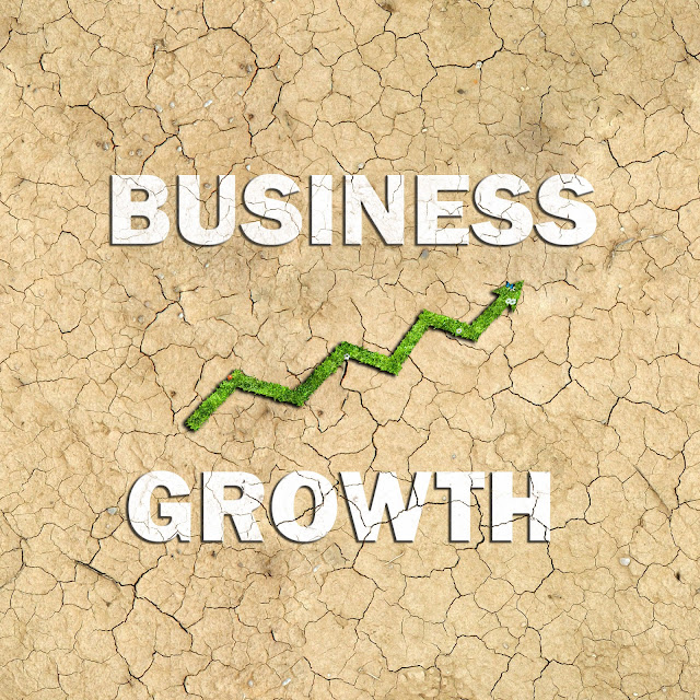 Business Growth 5