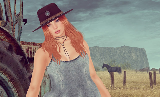 Wild%2BHorses Wild Horses Couldnt Drag Me Away
