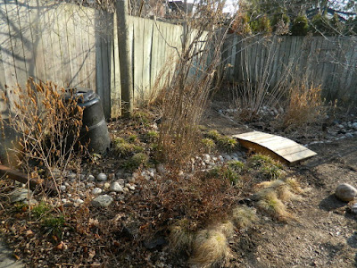 Riverdale spring 2018 garden cleanup before by Paul Jung Gardening Services a Toronto gardening company