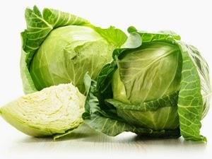 khasiat dan manfaat sayur kubis